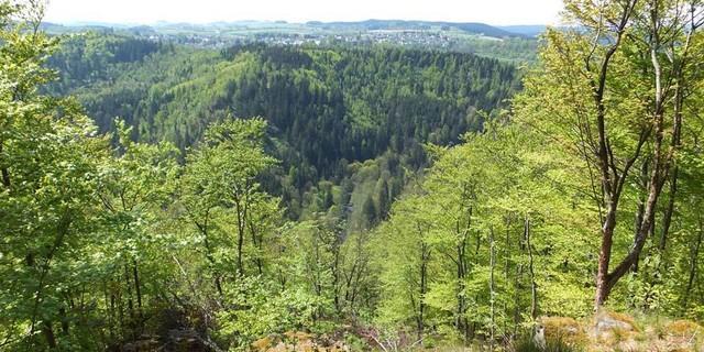 Frankenwald bei Lichtenberg, Foto: Thomas Krämer