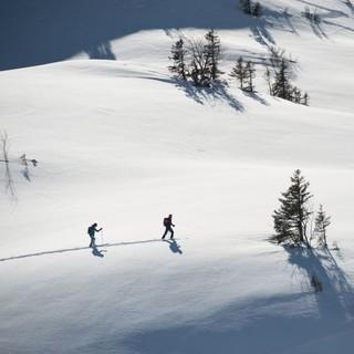 Natürlich auf Tour: Winterlandschaft im Allgäu. Foto: DAV / Terragraphy.de