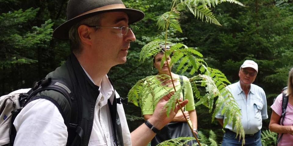Mit Wildpflanzenwirt Friedrich Klumpp auf informativer Kräuterwanderung. Foto: Joachim Chwaszcza