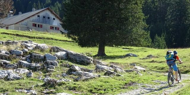 Tag 2: Auch Kleinvieh macht am Pas du Loup Mist! Jede noch so kleine Delle im Gelände summiert sich am Ende eines Tages zu veritablen Höhenmetern zusammen.