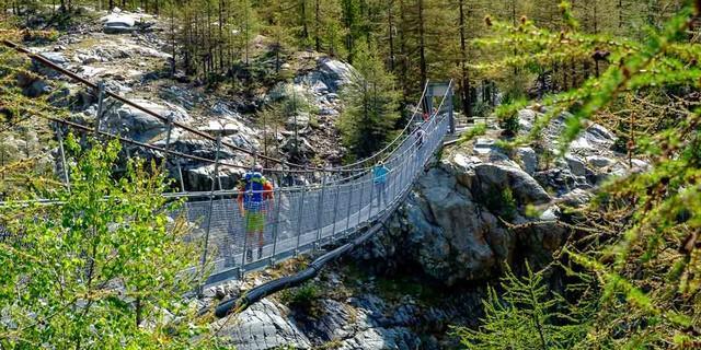 Eine Hängebrücke überwindet den engen Schlund auf dem Gletschergartenweg. Foto: Iris Kürschner/powerpress