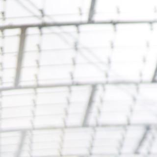 Boulder WM 2014 Halbfinale. Fotos: Nicolas Altmaier