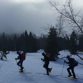Schneeschuhwandern, Foto: Jubi/ Heidi Harder