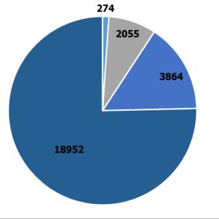dav in zahlen 2015