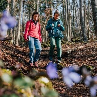 Auch in den Mittelgebirgen gibt es tolle Wander-Möglichkeiten. Foto: DAV/Julian Rohn