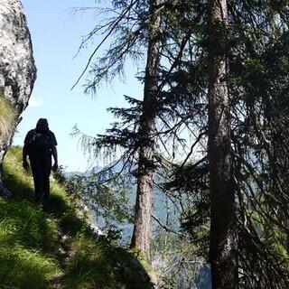 """Jägersteige im Hintergebirge - """"Wildniswandern"""" auf einem der alten Jägersteige im Hintergebirge. Foto: Georg Hohenester"""