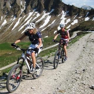 Zwei Mountainbiker beim Hinauffahren