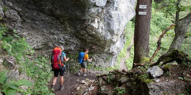 Totes Gebirge: Dichter Wald, steile Felsen, stille Stimmung – das Tote Gebirge nimmt von Anfang an gefangen. Foto: Iris Kürschner