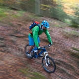 Ein Mountainbiker downhill im Wald unterwegs. Foto: Felix Käser-Funk
