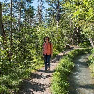 Auf manchen Abschnitten – wie hier an der Bisse du Torrent-Neuf – lässt es sich auch mal ganz entspannt wandern. Foto: Bernd Jung
