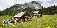 Totes Gebirge: Das Tote Gebirge bezaubert mit landschaftlicher Vielfalt: nach der Karstwüste mit blühenden Wiesen der Tauplitzalm. Foto: Iris Kürschner
