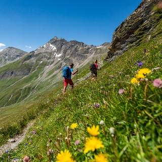 Tauernhöhenweg, Foto: DAV/ Franz Gerdl