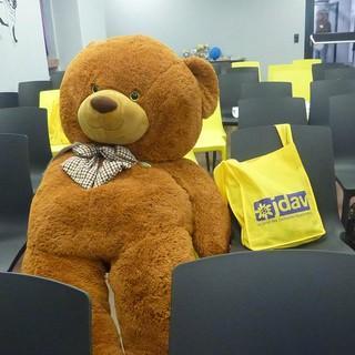 Teddy genießt die Ruhe im Plenum, Foto: JDAV/ Carmen Schauenburg