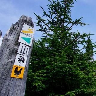 """Die markierten Wanderwege im Nationalparkgebiet sind mit Signets gekennzeichnet, wie """"Auerhahn"""" oder """"Bärlapp"""". Foto: Joachim Chwaszcza"""