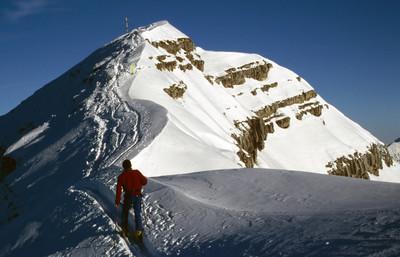 www.alpenverein.de