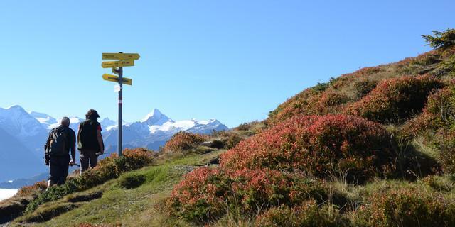 Ob Gipfel- oder Spaziergang: Der Direktblick auf die Wiesbachhorn-Glocknergruppe ist einzigartig. Foto: Andi Dick