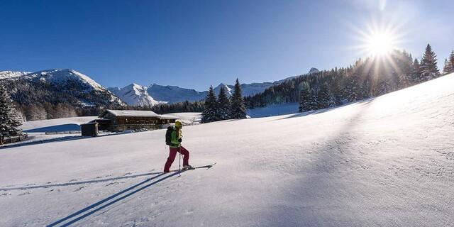 Auf dem Weg zum Sattelberg am Brenner (Tirol), Foto: Wolfgang Ehn