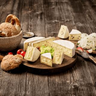 Auserwählte Käsespezialitäten von Bergader. Foto: Bergader