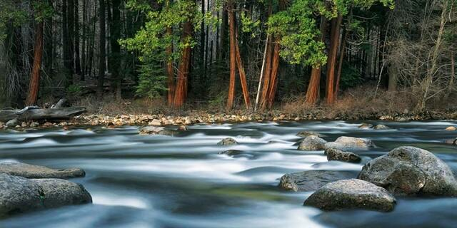 Im Yosemite-Valley, USA. Foto: Peter Mathis