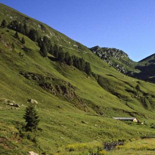 Sentiero Antonioli - 9. Etappe: Der letzte Tag im Gebirge, auf dem Sentiero Antonioli. Die südlichsten Berge der Adamellogruppe haben nur noch Vorgebirgscharakter. Satte grüne Wiesen erfreuen nach dem kargen Hochgebirge der letzten Tage.