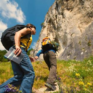 Klettern und Vogelschutz Foto: Michael Meisl/DAV