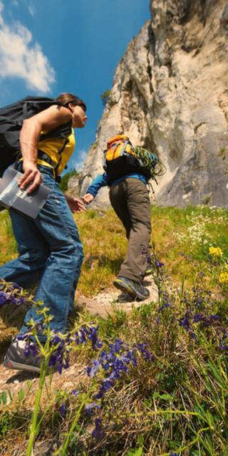Draußen klettern ist anders - den Fels teilen sich Sportler mit Wanderfalke, Uhu und Co. Foto: Michael Meisl/DAV