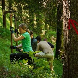 Arbeitseinsatz bei der Aktion Schutzwald (Foto: Arvid Uhlig)