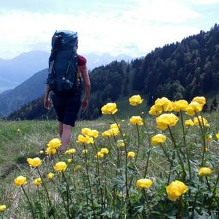 mangfallgebirge-durchquerung-low2