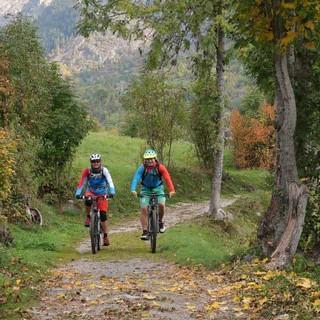 Glaciara: Gemütliches Einrollen auf Waldwegen im Fieschertal. Foto: Traian Grigorian