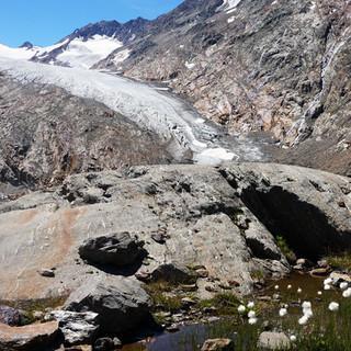 Blick auf die Zunge des Gurgler Ferners, Ötztaler Alpen (Foto: DAV/Tobias Hipp)