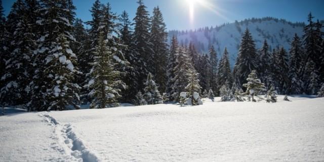 """""""Natürlich auf Tour"""" ist für 220.000 Schneeschuhgeher im DAV eine Selbstverständlichkeit. Foto: DAV/Daniel Hug"""