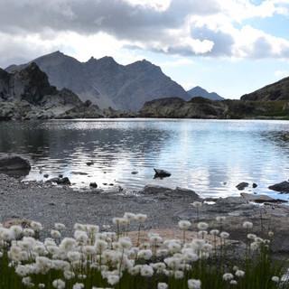 Zwischen Felsen und Wollgras liegt der Lac Blanchet. Foto: Solveig Michelsen