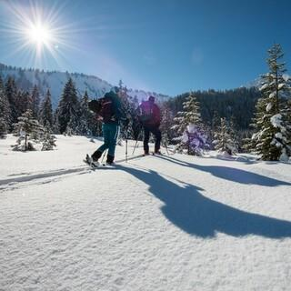 Bei einer Skitour ist Ausdauer gefragt! Foto: DAV/Daniel Hug