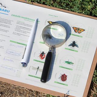 Insektensommer-Zählhilfe. Foto: NABU/Helge May