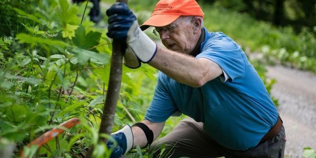 Aktion Schutzwald - In vollem Einsatz, Foto: DAV/Arvid Uhlig