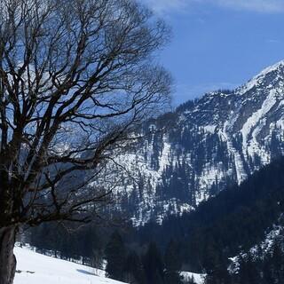 Das Große Walsertal ist perfekt für alle, die Ruhe suchen und aktiv sein wollen. Foto: Stefan Herbke