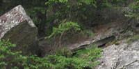 Bouldern - Bitte den Boulderappell beachten!