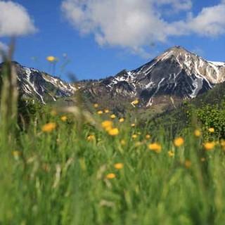 Geigelstein: zentraler Gipfel im Kartenblatt. Foto: Stefan Kattari, Ökomodell Achental