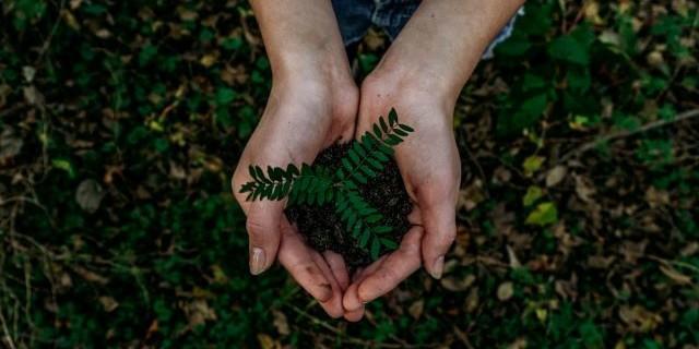 Gemeinsam die Natur entdecken. Gemeinsam für unsere Erde Gutes tun. (Foto: Noah Buscher/Unsplash.com)