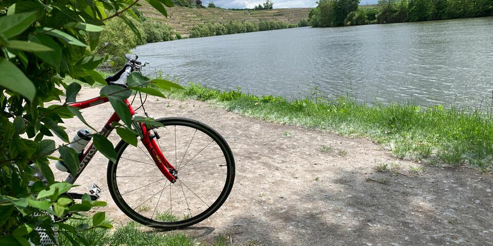 Entspannt radeln entlang dem Neckar. Wirkliche Steilpassegen gibt es nur am oberen Streckenabschnitt und in den Weinbergen. Foto: Joachim Chwasczca