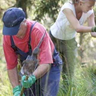 Aktion-Schutzwald-HelferbeimPflanzen-MarcoKost