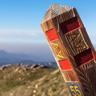 Der Ligurische Höhenweg ist mit einheitlichen Holzpfosten durchgehend gut markiert. Foto: Ingo Röger
