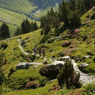 Wanderweg durchs Vall de Núria, Foto: ©FGC