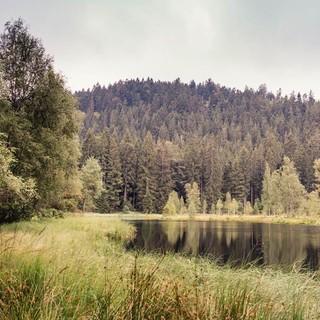 Am Buhlbachsee mit seiner schwimmenden Moorinsel, Foto: Stefan Kuhn Photography