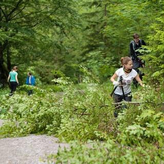 Aktion Schutzwald - Fast wie im Dschungel, Foto: DAV/Arvid Uhlig