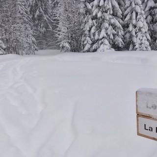 Aufstieg über den Risoux-Wald - Der Abzweig zum Aufstieg über den Risoux-Wald. Knapp 200 Höhenmeter liegen vor uns. Unsere Befürchtungen scheinen sich zu Bewahrheiten: Hier ist schon lang keine Loipenraupe mehr vorbeigekommen und der Neuschnee ist mittlerweile knöcheltief.