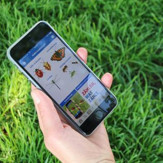 Die App Insektenwelt vom NABU; Foto: NABU/Eric Neuling