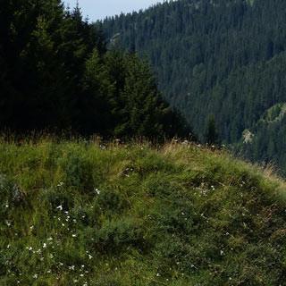 Über den Brenner - Abseits der Autobahn wird der Brenner erradelt. Alternativ gibt's auch einen Zug.
