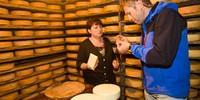 """Der hausgemachte """"Bettelmattkäse"""" des Agritourismo von Crampiolo ist Spezialität des Devero-Hochtales. Foto: Powerpress.ch"""