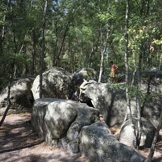 Boulder in Fontainebleau, Foto: JDAV/Renate Hubel